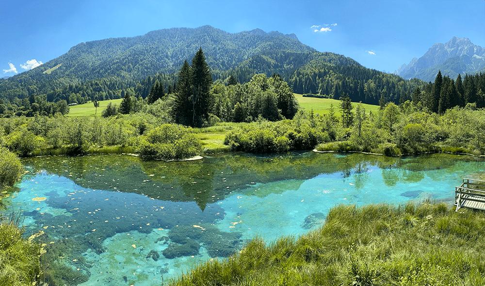 lac zelenci slovenie