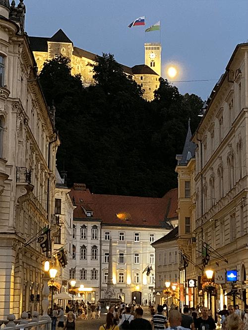 Vue château Ljubjana