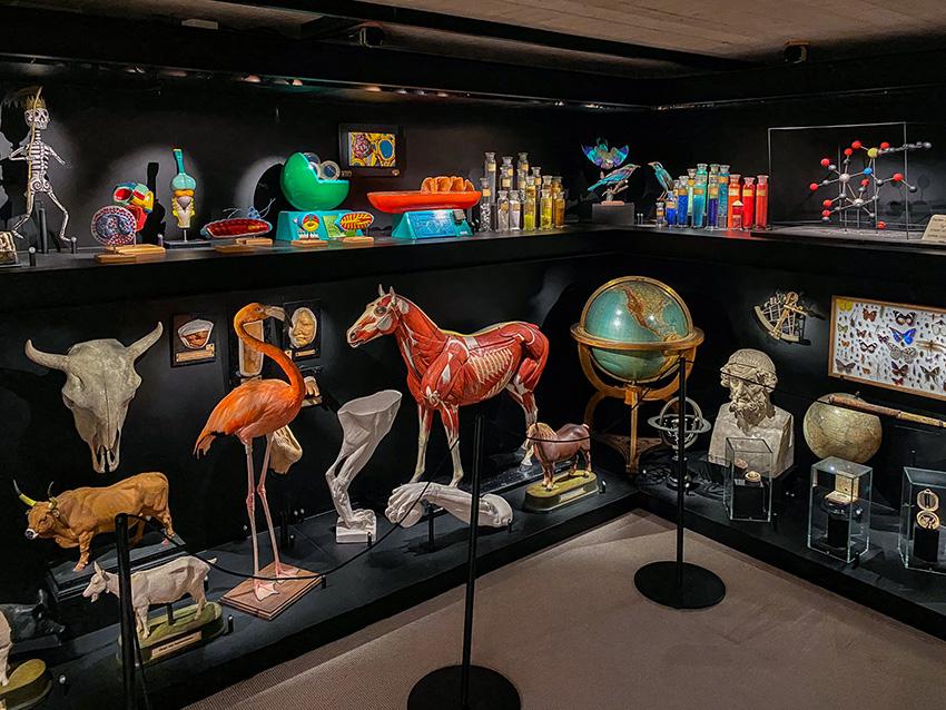 Musée universitaire de Louvain-la-Neuve (musée L)