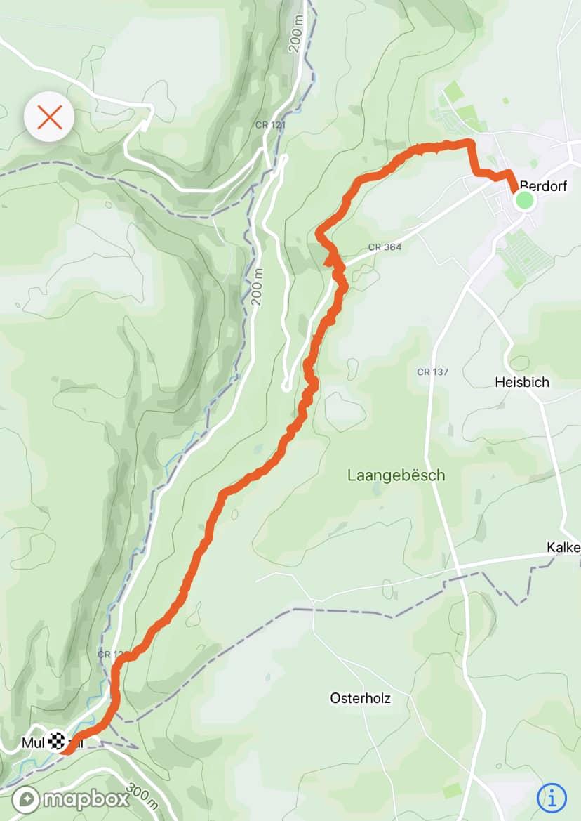 7 bonnes raisons de faire une randonnée sur le Mullerthal Trail