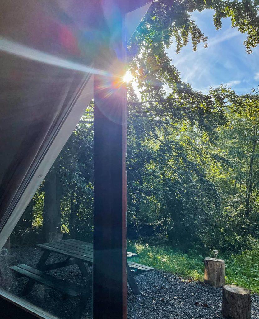 Vue sur la terrasse du logement insolite in the woods